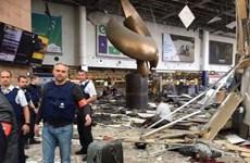 [Videographics] Nhìn lại loạt vụ khủng bố đẫm máu tại Brussels