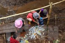 Đắk Lắk thiệt hại tới hơn 1.300 tỷ đồng vì khô hạn khốc liệt
