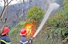 Rừng phòng hộ ở Điện Biên bốc cháy dữ dội trong gần 3 ngày