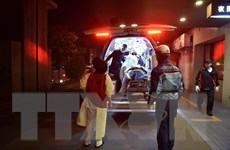 Nhật Bản: 7 người thiệt mạng trong trận động đất 7,3 độ Richter