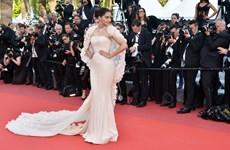 Những xu hướng thời trang đỉnh nhất trên thảm đỏ Cannes 2016