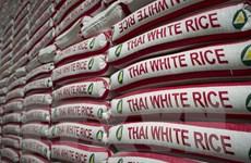 Hạn hán khiến giá gạo xuất khẩu của Thái Lan tăng cao kỷ lục