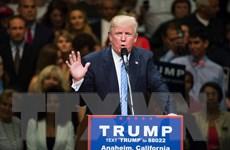 """Tỷ phú Donald Trump đại thắng trong ngày """"siêu thứ Ba"""" cuối cùng"""