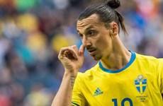 EURO 2016: Ireland và Thụy Điển nung nấu quyết tâm xóa ký ức buồn