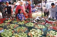 Nông dân Bình Phước thu hàng trăm triệu đồng cho mỗi ha xoài