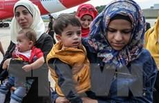 Mỹ gắng hoàn thành mục tiêu tiếp nhận 10.000 người tị nạn Syria