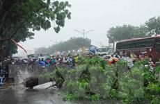 Hà Nội ngày nắng đêm mưa, miền Trung và Nam Bộ thời tiết xấu
