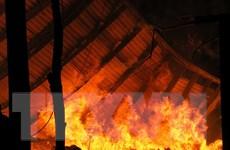 Xưởng gỗ bốc cháy ngùn ngụt khiến công nhân phải tháo chạy