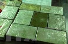Biên phòng Lạng Sơn bắt 1 đối tượng vận chuyển 14 bánh heroin