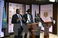 Kêu gọi các nước láng giềng giúp chấm dứt giao tranh ở Nam Sudan