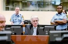 Cựu lãnh đạo người Serbia ở Bosnia-Herzegovina kháng cáo
