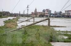 Đại diện Điện lực miền Bắc: Các cột điện đổ do bão đều đạt chuẩn