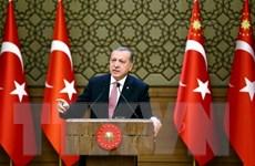 Hàng trăm nghìn người míttinh ủng hộ Tổng thống Thổ Nhĩ Kỳ