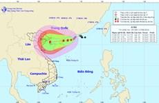 Khẩn trương ứng phó với với diễn biến của áp thấp nhiệt đới