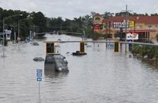 Mỹ: Bang Louisiana chìm trong mưa lũ, cháy rừng ở California