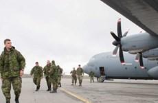 Hàng trăm lính Canada tập trận bảo vệ chủ quyền phía Bắc