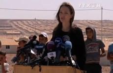 [Video] Angelina Jolie kể về thảm trạng của người dân Syria