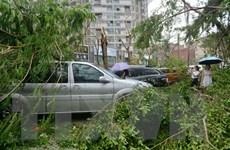Siêu bão mạnh nhất trong năm càn quét miền Đông Trung Quốc