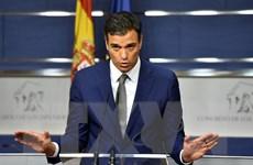 Tây Ban Nha: Hơn nửa số lãnh đạo đảng PSOE đồng loạt từ chức