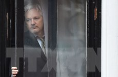 Wikileaks hủy đợt công bố thông tin nhạy cảm vì lo ngại an ninh