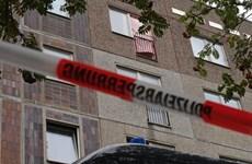 Đức bắt nghi can khủng bố âm mưu đánh bom sân bay Berlin