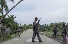 Myanmar: Đụng độ ở bang Rakhine, 12 lính biên phòng thiệt mạng