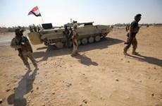 Các lực lượng Iraq chỉ còn cách ngoại ô thành phố Mosul 3km