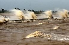 Bình Thuận: Sóng to gió lớn đánh chìm 7 tàu đánh cá ngoài khơi