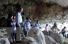 Quảng Ninh thông tin về việc chặt phá nhũ đá ở Vịnh Hạ Long