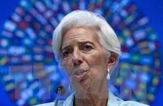 """Tòa án Pháp xác định Tổng Giám đốc IMF Lagarde mắc tội """"tắc trách"""""""