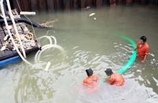 Nghiên cứu lập hồ sơ các di chỉ khảo cổ dưới nước ở Việt Nam