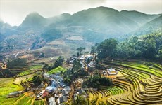 Chiêm ngưỡng vẻ đẹp mê hoặc của vùng đá núi kỳ vĩ Hà Giang