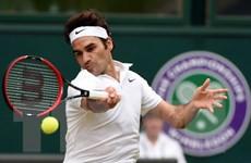 Tennis 2017 - Năm của những sự trở lại hứa hẹn đầy kịch tính