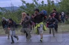"""Hiệu ứng """"domino"""" về kiểm soát người nhập cư ở Scandinavia"""