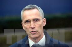NATO muốn đẩy mạnh hợp tác với các nước vùng Vịnh