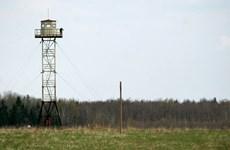 Latvia xây tường rào tại biên giới với Nga nhằm ngăn người di cư