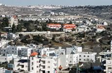 PLO lên án Israel hợp pháp hóa hàng nghìn nhà định cư ở Bờ Tây