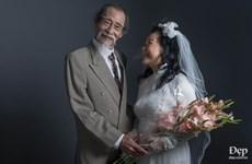 Mối tình đắm đuối hơn nửa thế kỷ của cặp đôi showbiz Việt