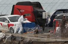 Hàn Quốc báo động dịch bệnh lở mồm long móng ở mức cao nhất