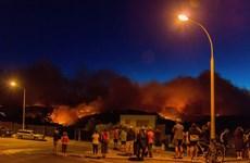 Cháy rừng dữ dội ở New Zealand, hơn 1.000 người sơ tán khẩn cấp