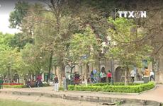 """[Video] Xây dựng """"đại lộ danh vọng"""" tại Hà Nội - nên hay không?"""