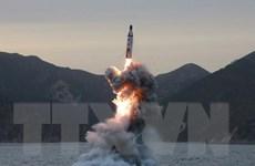 [Video] Triều Tiên phóng 4 tên lửa đạn đạo ra biển Nhật Bản