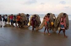 Sri Lanka đồng ý trao trả 85 ngư dân Ấn Độ đang bị giam giữ