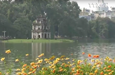[Video] Hà Nội sẽ không dựng mô hình phim Kong tại Hồ Gươm