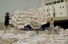 Kiến tạo toàn diện tạo giá trị gia tăng tốt nhất cho gạo Việt Nam