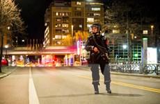 Na Uy: Phát hiện vật thể nghi là bom ở trung tâm thủ đô Oslo