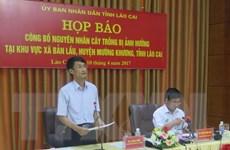 Lào Cai yêu cầu doanh nghiệp làm chết dứa bồi thường cho dân