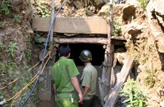 Điều tra thông tin khai thác vàng quy mô lớn ở mỏ vàng Bồng Miêu