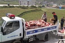 Cao Bằng thu giữ hơn 2 tấn thịt lợn đông lạnh không rõ nguồn gốc