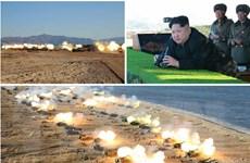 """Quân đội Triều Tiên đang trong """"tình trạng báo động cao nhất"""""""